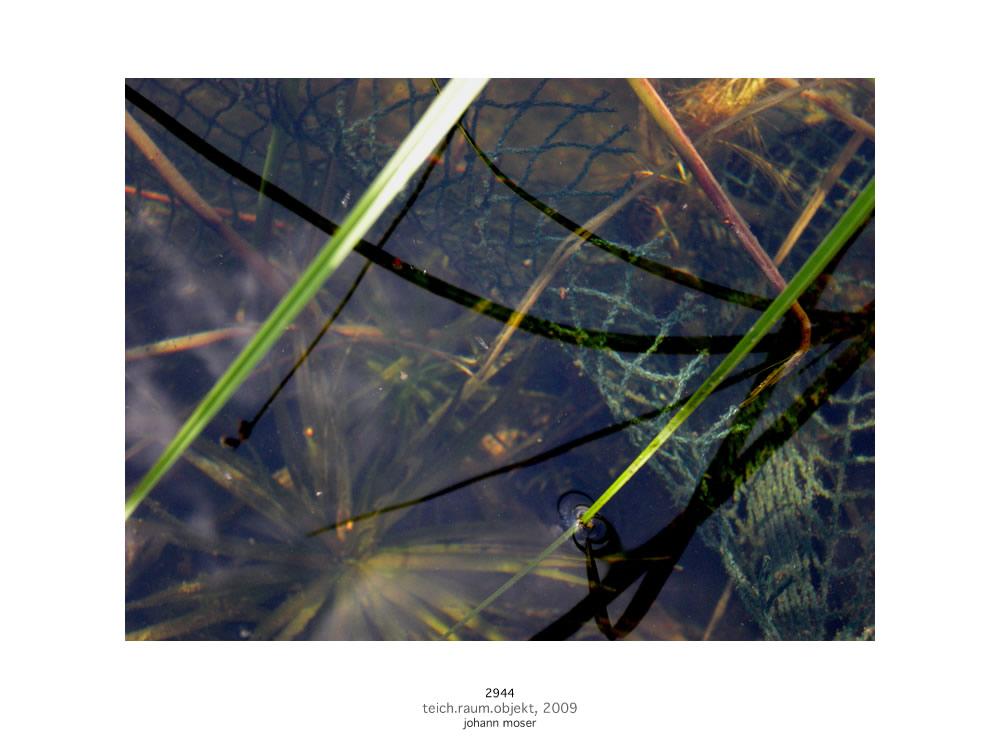 teich-raum-objekt-2944